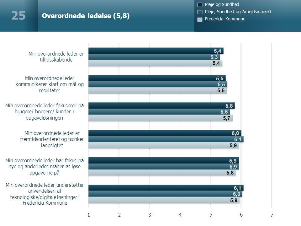 Overordnede ledelse (5,8) 25