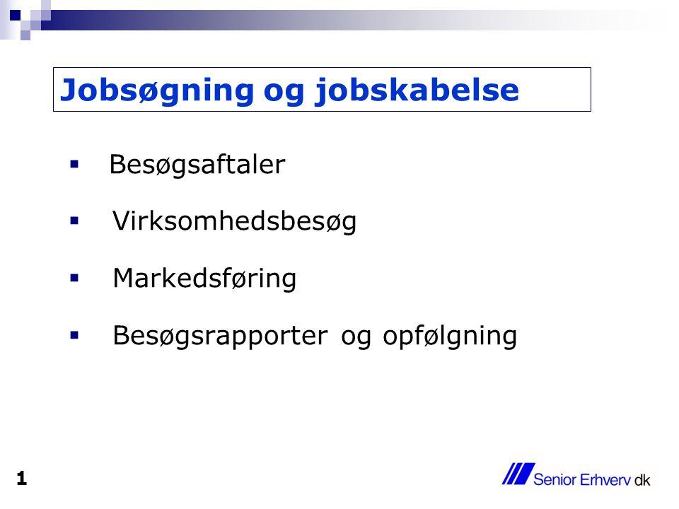  Besøgsaftaler  Virksomhedsbesøg  Markedsføring  Besøgsrapporter og opfølgning Jobsøgning og jobskabelse 1