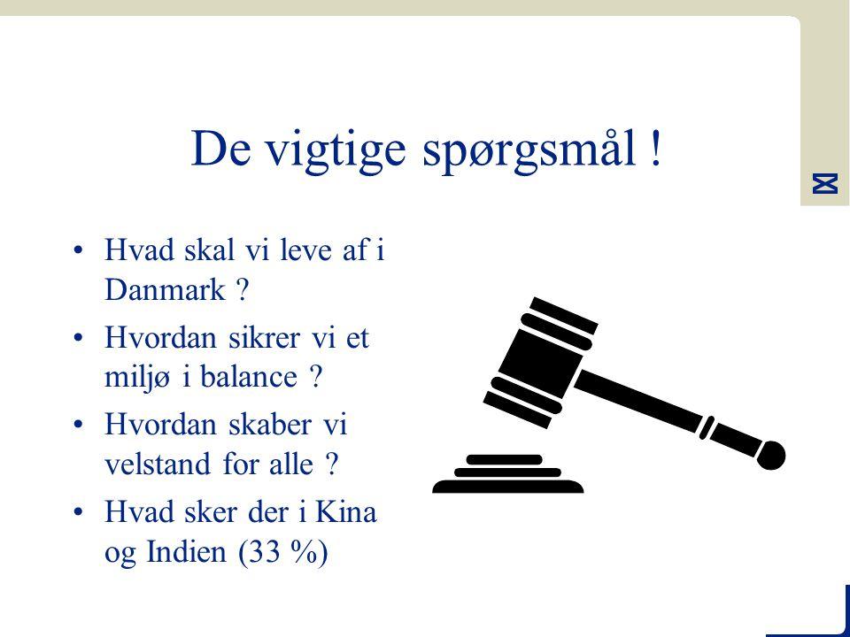 De vigtige spørgsmål . Hvad skal vi leve af i Danmark .