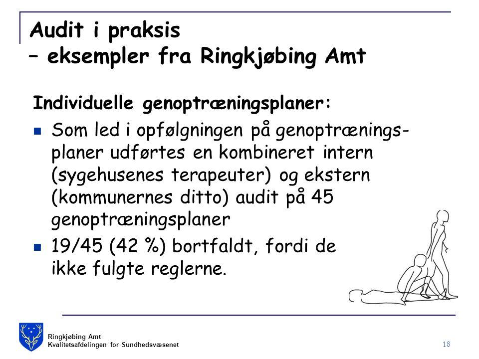 Ringkjøbing Amt Kvalitetsafdelingen for Sundhedsvæsenet 18 Audit i praksis – eksempler fra Ringkjøbing Amt Individuelle genoptræningsplaner: Som led i opfølgningen på genoptrænings- planer udførtes en kombineret intern (sygehusenes terapeuter) og ekstern (kommunernes ditto) audit på 45 genoptræningsplaner 19/45 (42 %) bortfaldt, fordi de ikke fulgte reglerne.
