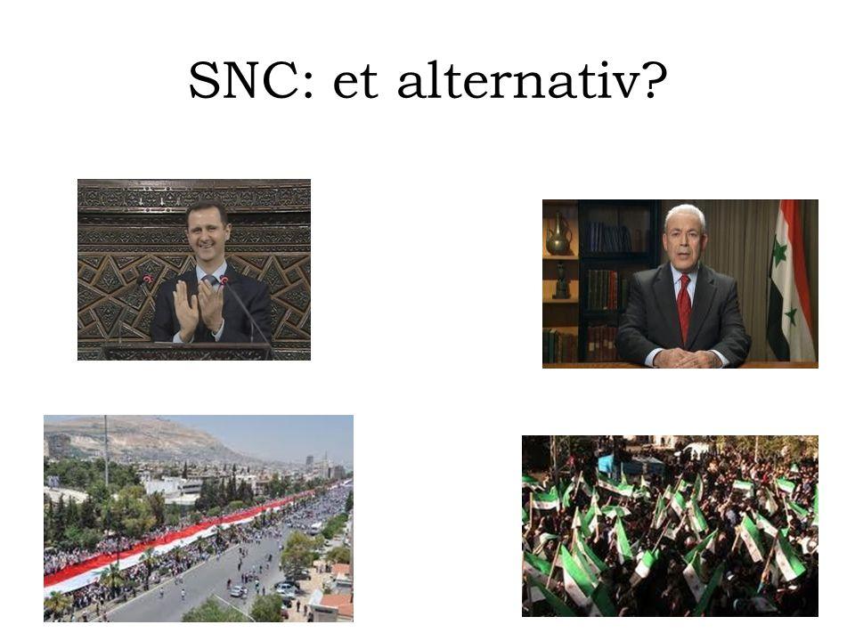 SNC: et alternativ