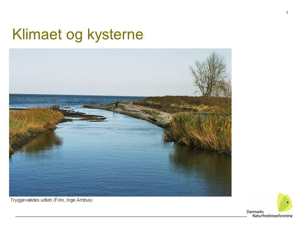1 Klimaet og kysterne Tryggevældes udløb (Foto, Inge Ambus)