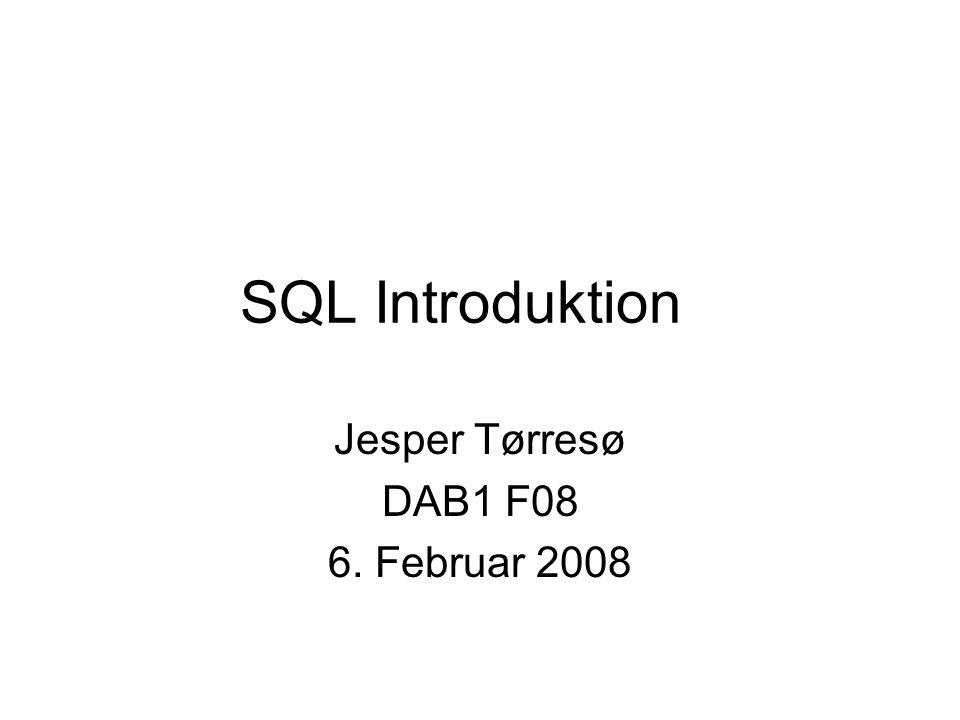 SQL Introduktion Jesper Tørresø DAB1 F08 6. Februar 2008