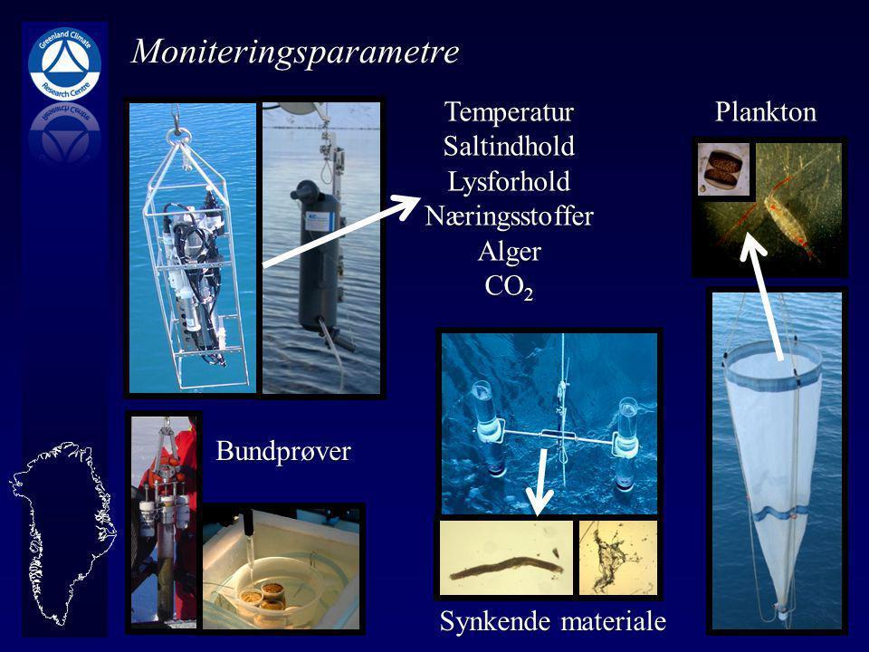 Plankton Synkende materiale TemperaturSaltindholdLysforholdNæringsstofferAlger CO 2 Moniteringsparametre Bundprøver