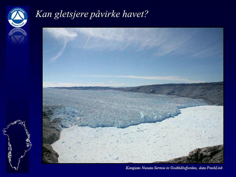 Kangiata Nunata Sermia in Godthåbsfjorden, data FreshLink Kan gletsjere påvirke havet