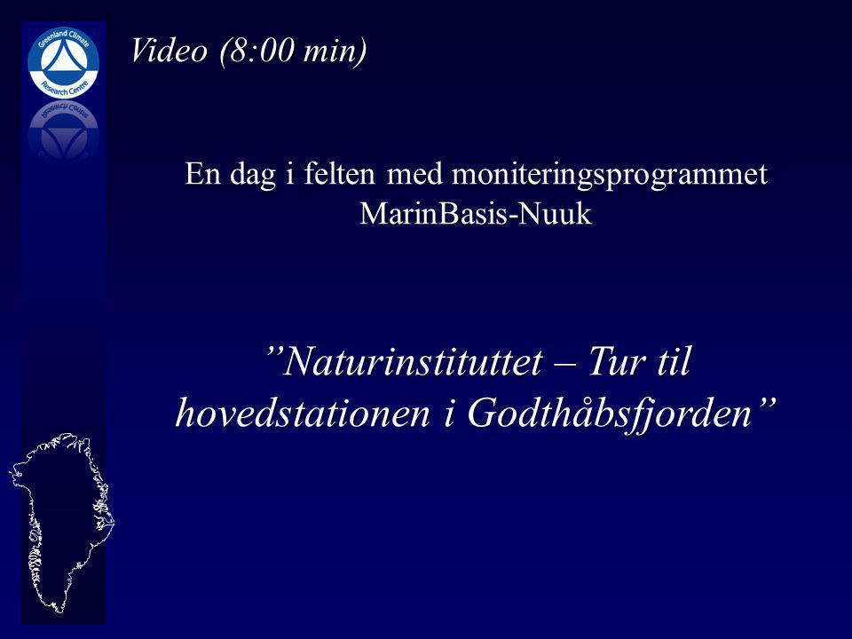 Video (8:00 min) En dag i felten med moniteringsprogrammet MarinBasis-Nuuk Naturinstituttet – Tur til hovedstationen i Godthåbsfjorden