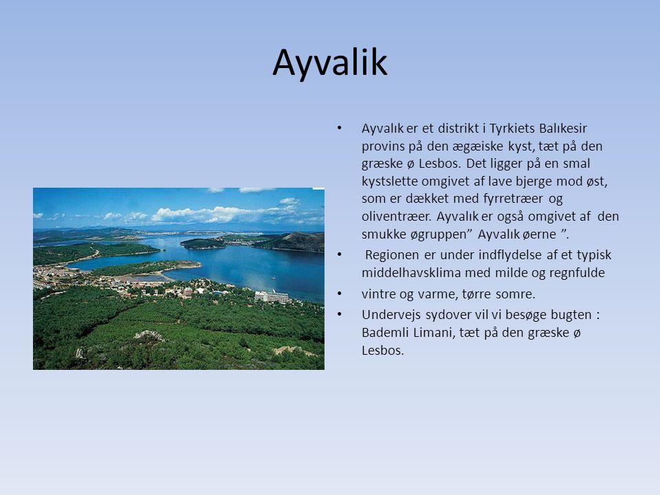 Ayvalik Ayvalık er et distrikt i Tyrkiets Balıkesir provins på den ægæiske kyst, tæt på den græske ø Lesbos.