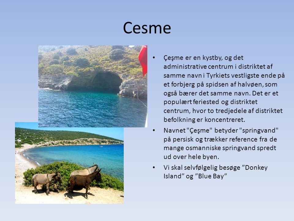 Cesme Çeşme er en kystby, og det administrative centrum i distriktet af samme navn i Tyrkiets vestligste ende på et forbjerg på spidsen af halvøen, som også bærer det samme navn.