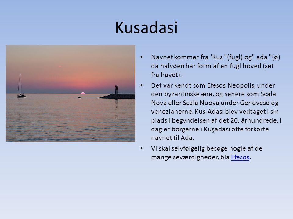 Kusadasi Navnet kommer fra Kus (fugl) og ada (ø) da halvøen har form af en fugl hoved (set fra havet).
