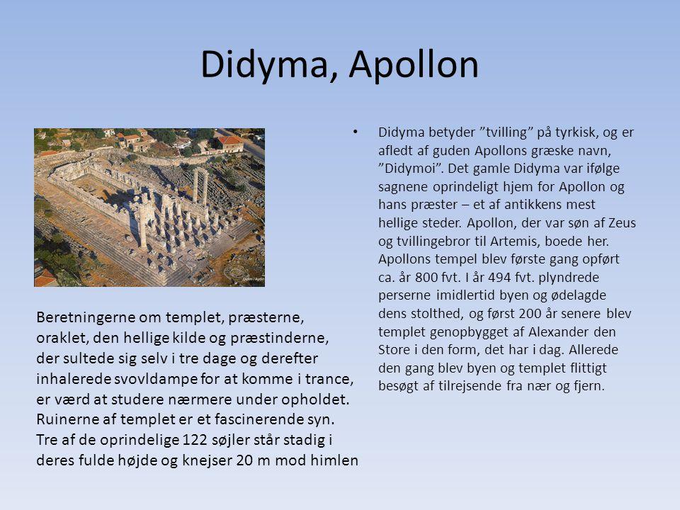 Didyma, Apollon Didyma betyder tvilling på tyrkisk, og er afledt af guden Apollons græske navn, Didymoi .