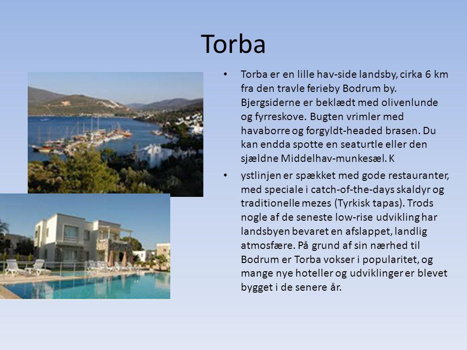 Torba Torba er en lille hav-side landsby, cirka 6 km fra den travle ferieby Bodrum by.