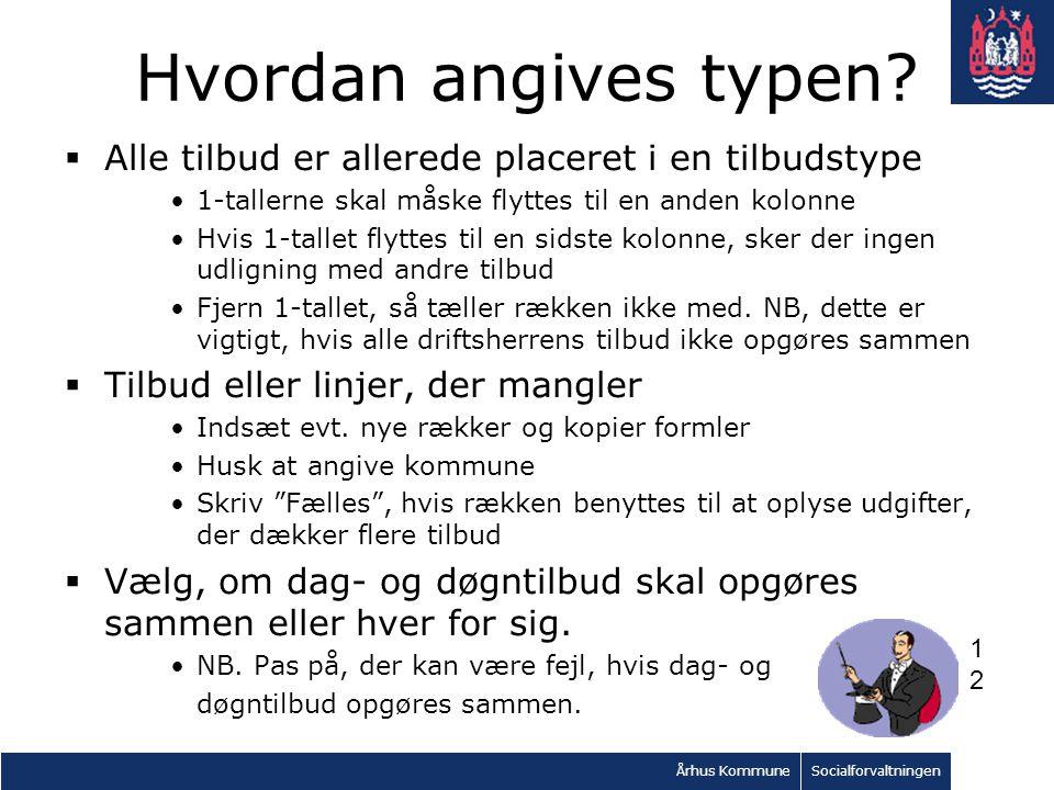 Århus KommuneSocialforvaltningen Hvordan angives typen.