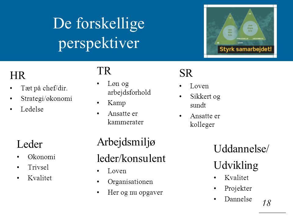 Klik for at redigere titeltypografi i masteren 18 De forskellige perspektiver HR Tæt på chef/dir.