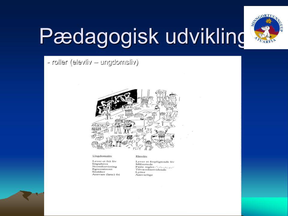 Pædagogisk udvikling - roller (elevliv – ungdomsliv)