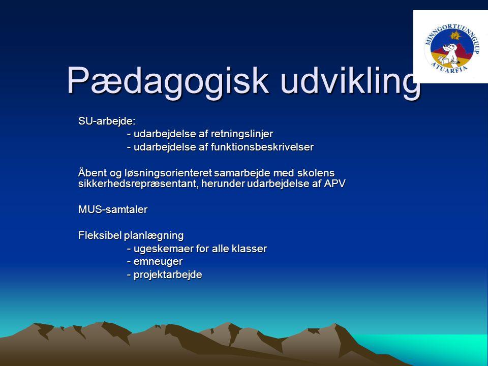 Pædagogisk udvikling SU-arbejde: - udarbejdelse af retningslinjer - udarbejdelse af funktionsbeskrivelser Åbent og løsningsorienteret samarbejde med skolens sikkerhedsrepræsentant, herunder udarbejdelse af APV MUS-samtaler Fleksibel planlægning - ugeskemaer for alle klasser - emneuger - projektarbejde