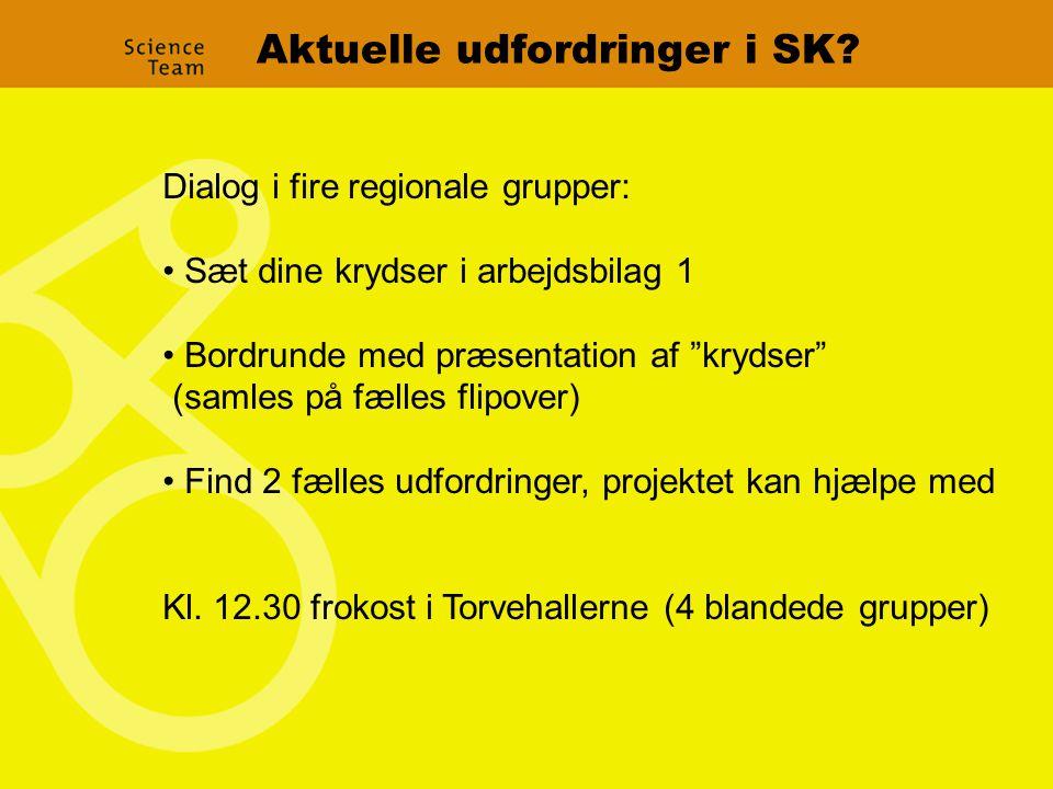Aktuelle udfordringer i SK.