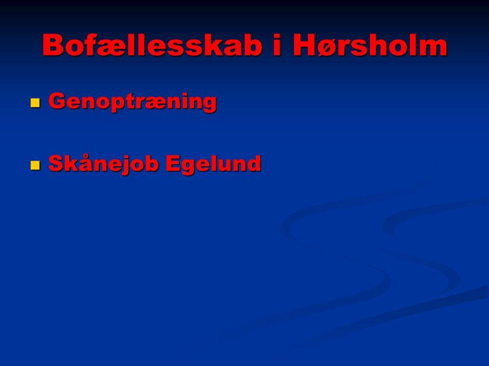 Bofællesskab i Hørsholm Genoptræning Genoptræning Skånejob Egelund Skånejob Egelund