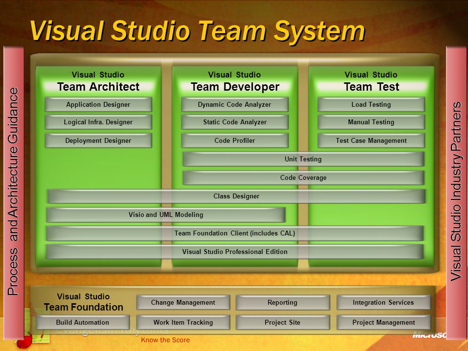 Visual Studio Team System Change ManagementWork Item Tracking Reporting Project Site Visual Studio Team Foundation Integration ServicesProject Management Process and Architecture Guidance Dynamic Code Analyzer Visual Studio Team Architect Static Code Analyzer Code ProfilerUnit Testing Code Coverage Visio and UML ModelingTeam Foundation Client (includes CAL)Visual Studio Professional Edition Load TestingManual Testing Test Case ManagementApplication Designer Logical Infra.