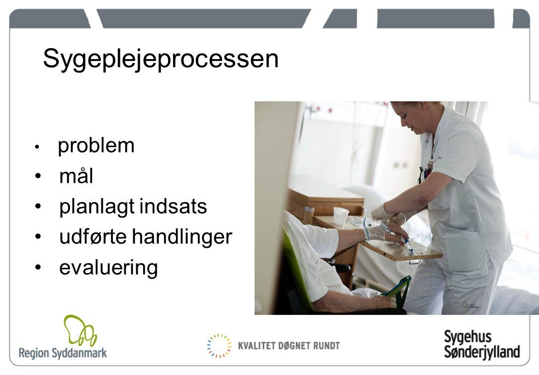 10 Sygeplejeprocessen problem mål planlagt indsats udførte handlinger evaluering