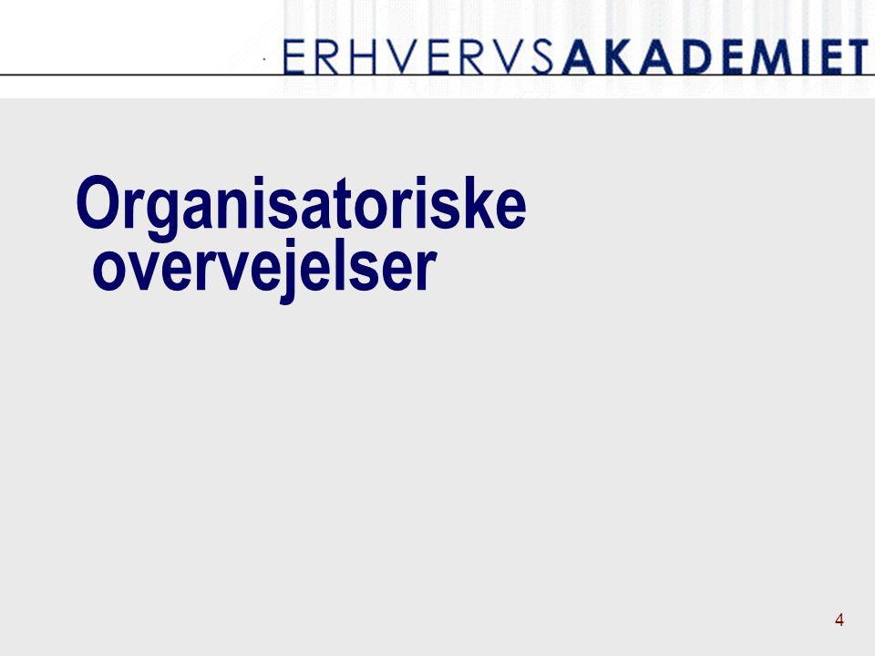4 Organisatoriske overvejelser
