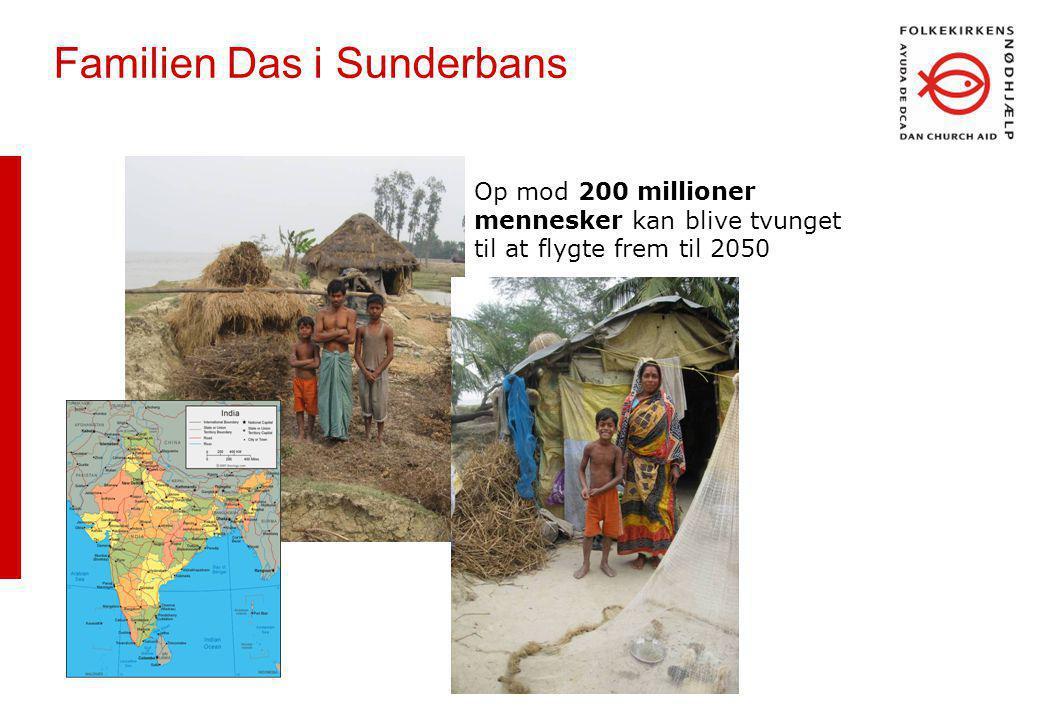 Familien Das i Sunderbans Op mod 200 millioner mennesker kan blive tvunget til at flygte frem til 2050