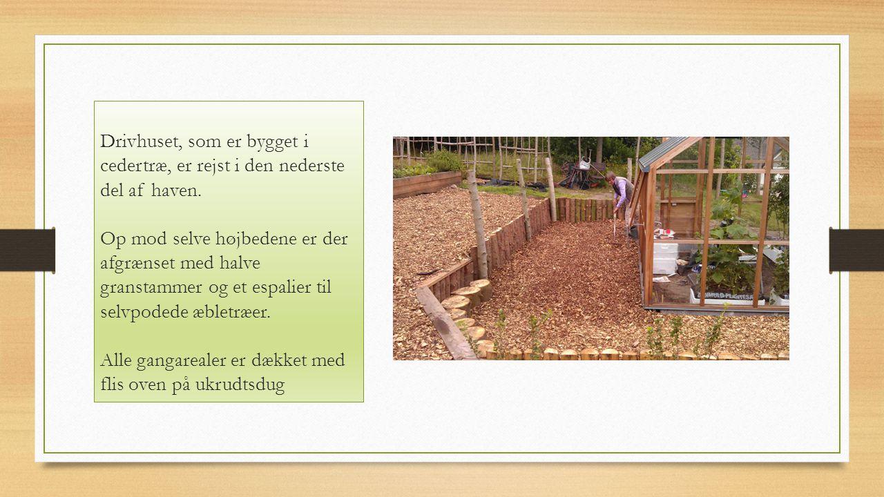 Drivhuset, som er bygget i cedertræ, er rejst i den nederste del af haven.