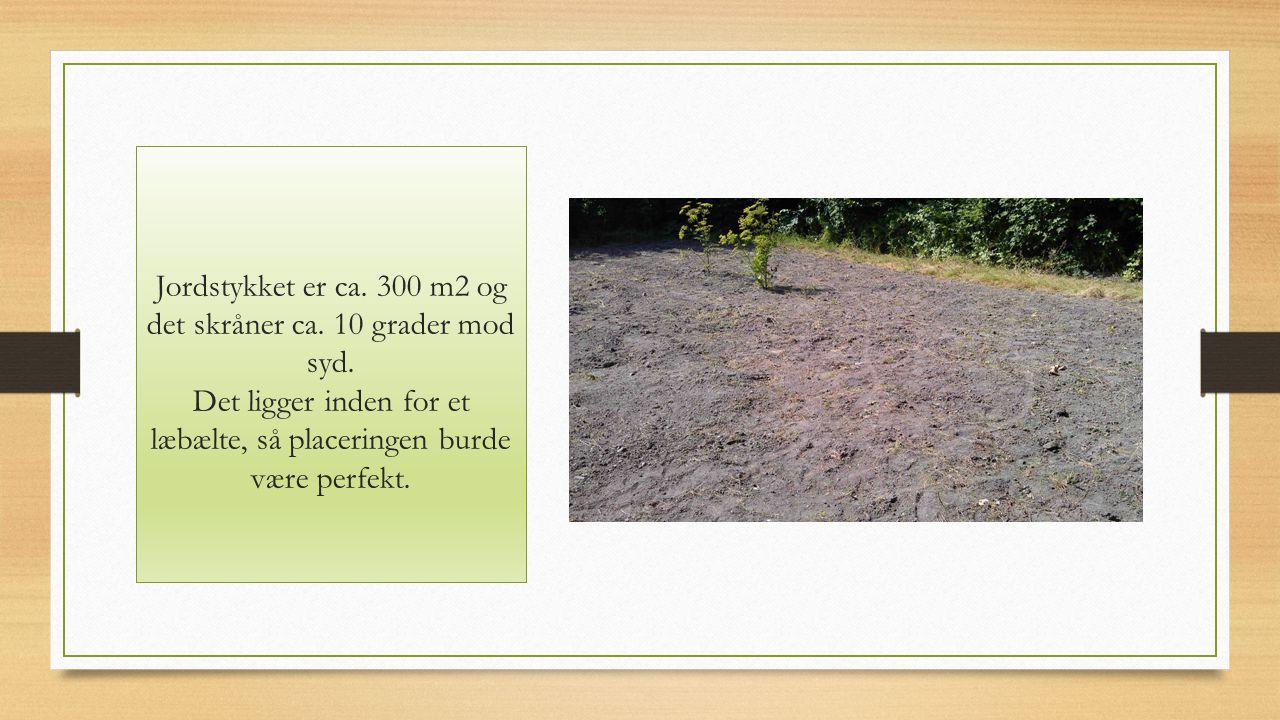 Jordstykket er ca. 300 m2 og det skråner ca. 10 grader mod syd.