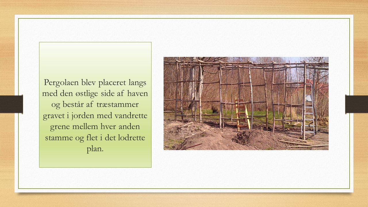 Pergolaen blev placeret langs med den østlige side af haven og består af træstammer gravet i jorden med vandrette grene mellem hver anden stamme og flet i det lodrette plan.