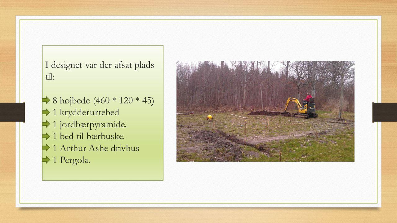 I designet var der afsat plads til: 8 højbede (460 * 120 * 45) 1 krydderurtebed 1 jordbærpyramide.