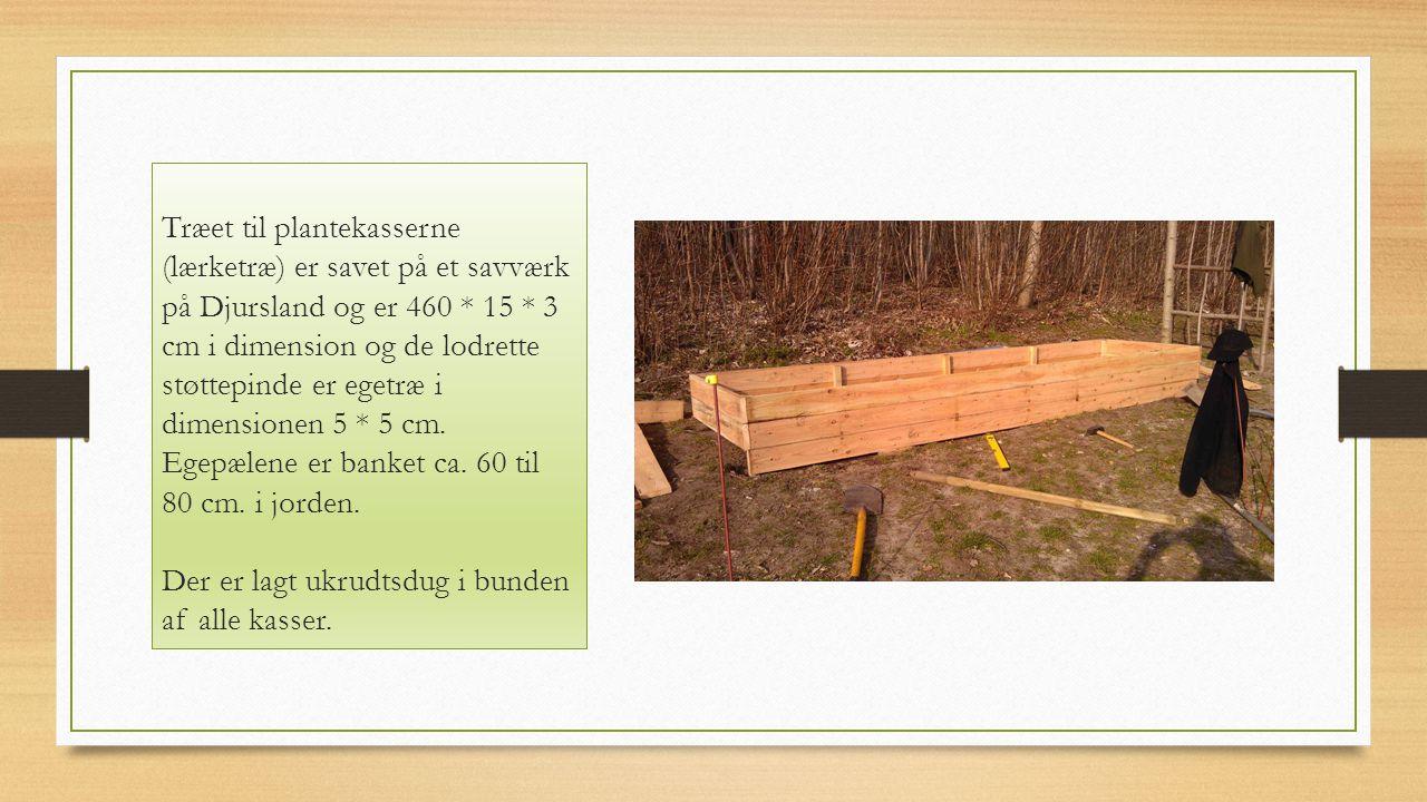 Træet til plantekasserne (lærketræ) er savet på et savværk på Djursland og er 460 * 15 * 3 cm i dimension og de lodrette støttepinde er egetræ i dimensionen 5 * 5 cm.