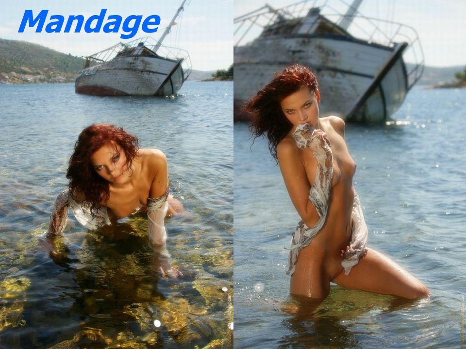 7 overlevende 1 mand og 6 kvinder Skyllet op på stranden på en øde ø De organiserer deres liv.