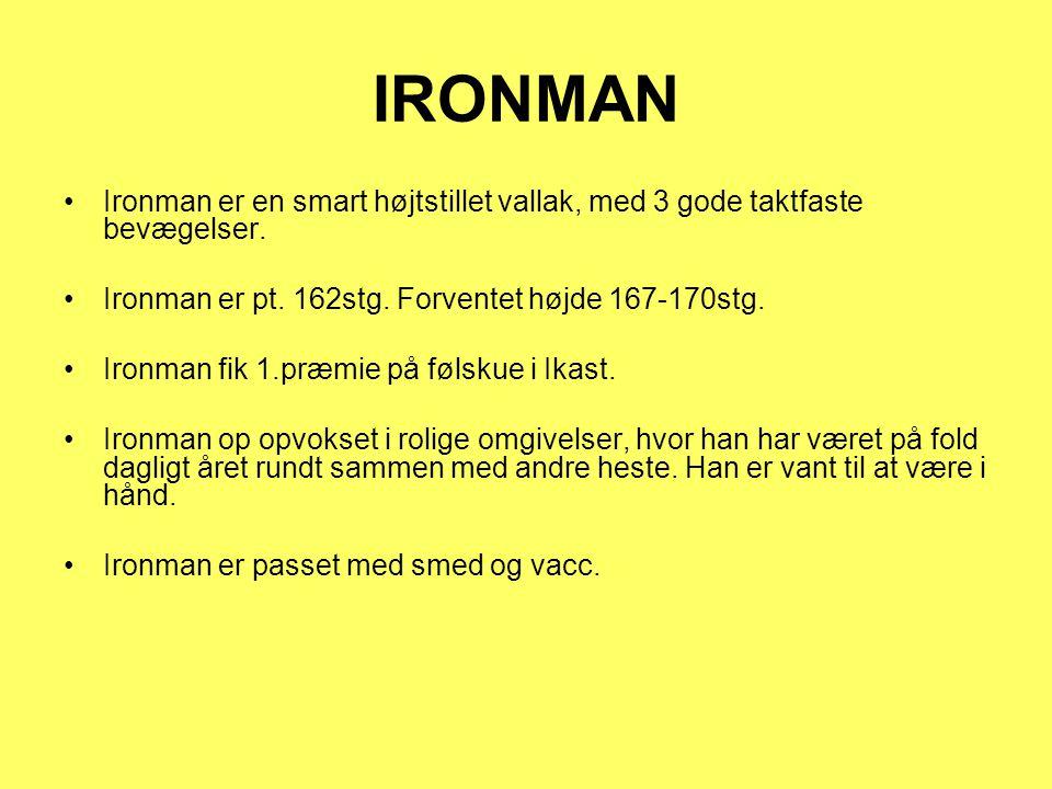 IRONMAN Ironman er en smart højtstillet vallak, med 3 gode taktfaste bevægelser.