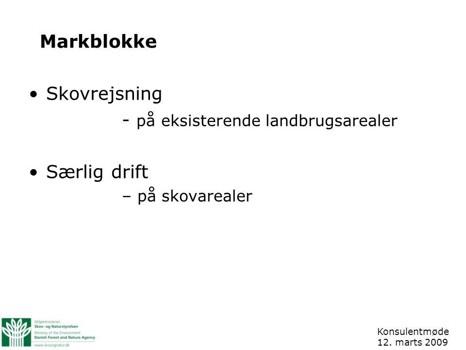 Markblokke Skovrejsning - på eksisterende landbrugsarealer Særlig drift – på skovarealer Konsulentmøde 12.