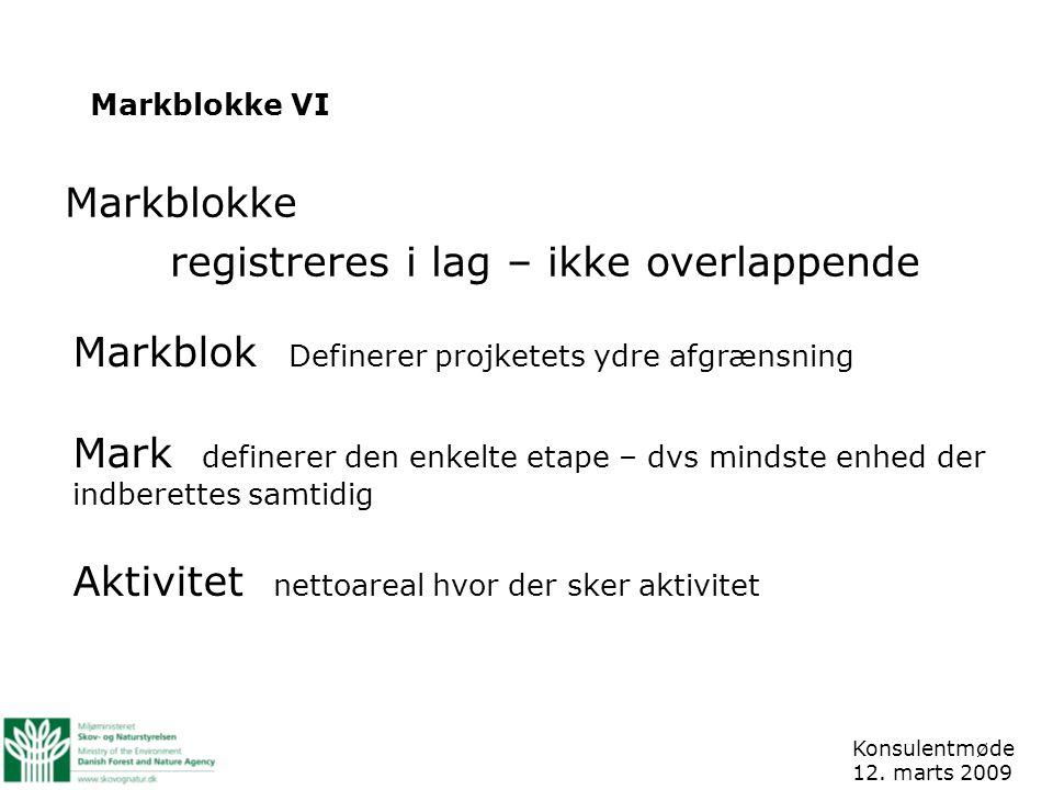 Markblokke VI Konsulentmøde 12.