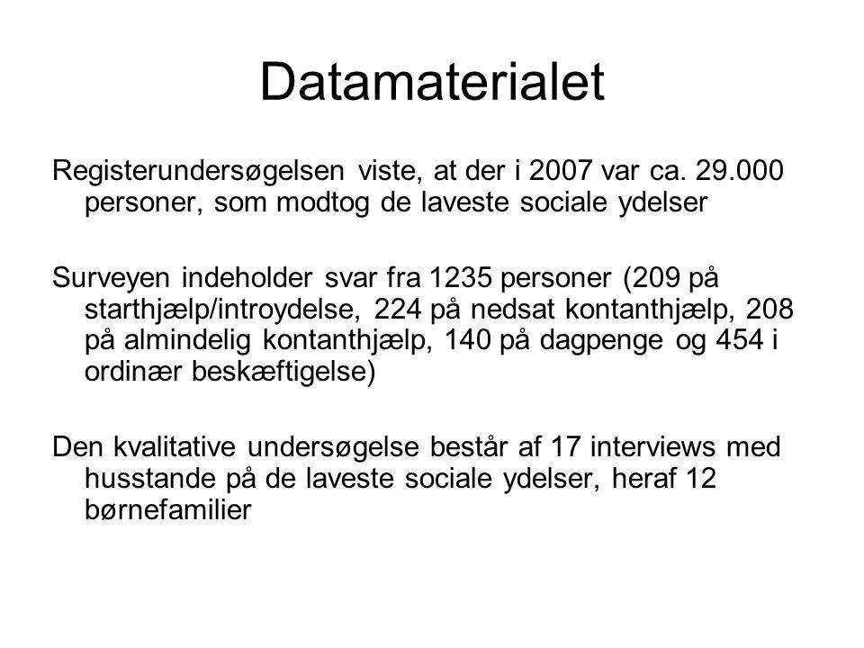 Datamaterialet Registerundersøgelsen viste, at der i 2007 var ca.