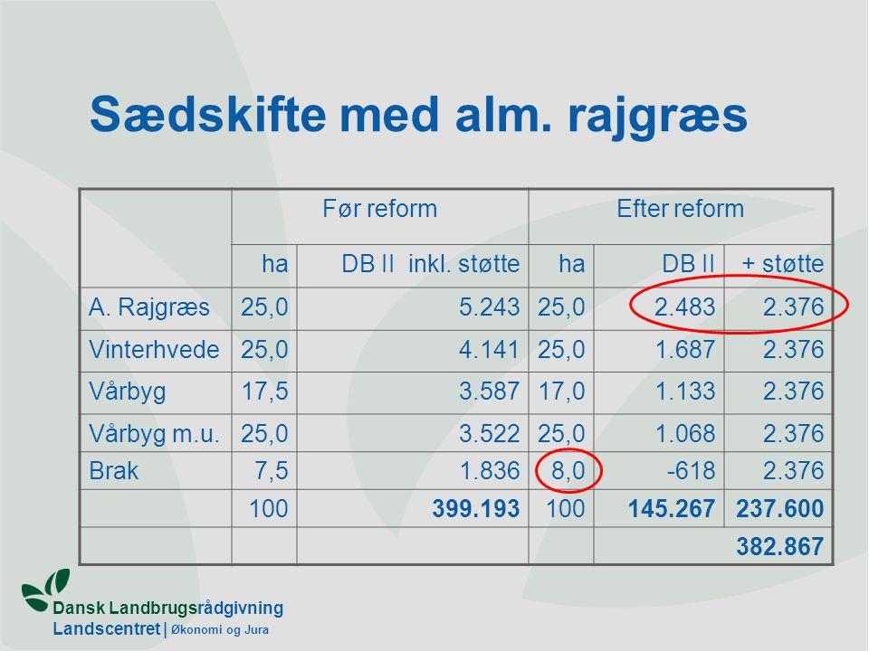 Dansk Landbrugsrådgivning Landscentret | Økonomi og Jura Sædskifte med alm.