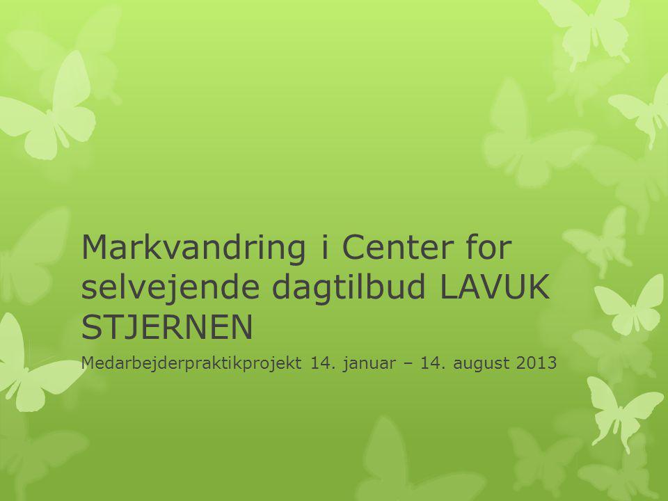 Markvandring i Center for selvejende dagtilbud LAVUK STJERNEN Medarbejderpraktikprojekt 14.