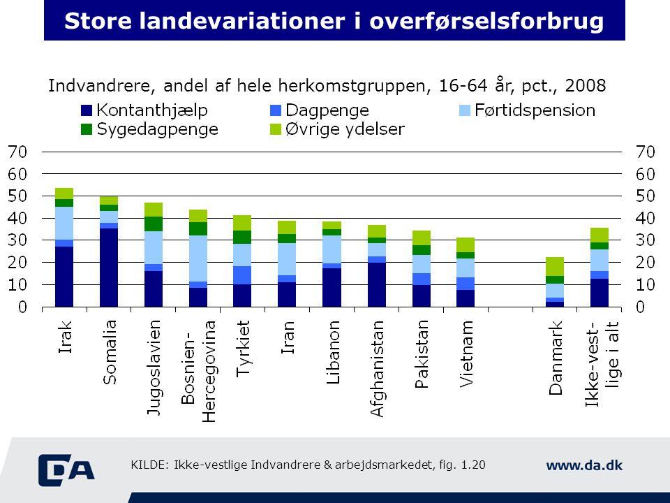 Store landevariationer i overførselsforbrug Indvandrere, andel af hele herkomstgruppen, 16-64 år, pct., 2008 Ikke-vest- lige i alt KILDE: Ikke-vestlige Indvandrere & arbejdsmarkedet, fig.