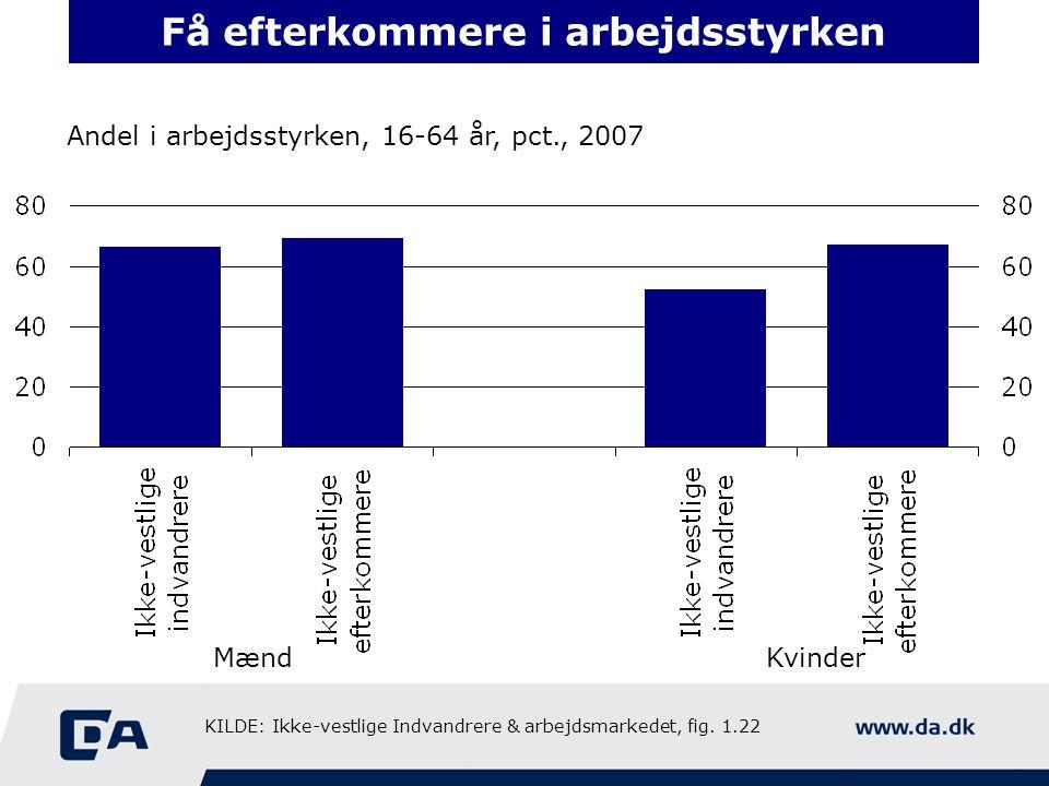 Få efterkommere i arbejdsstyrken Andel i arbejdsstyrken, 16-64 år, pct., 2007 MændKvinder KILDE: Ikke-vestlige Indvandrere & arbejdsmarkedet, fig.