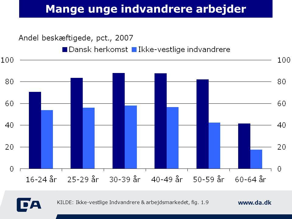 Mange unge indvandrere arbejder Andel beskæftigede, pct., 2007 KILDE: Ikke-vestlige Indvandrere & arbejdsmarkedet, fig.