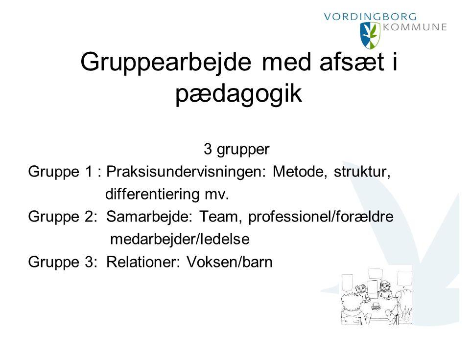 3 grupper Gruppe 1 : Praksisundervisningen: Metode, struktur, differentiering mv.
