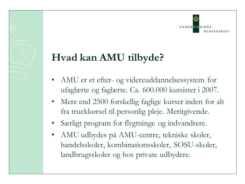 Hvad kan AMU tilbyde. AMU er et efter- og videreuddannelsessystem for ufaglærte og faglærte.