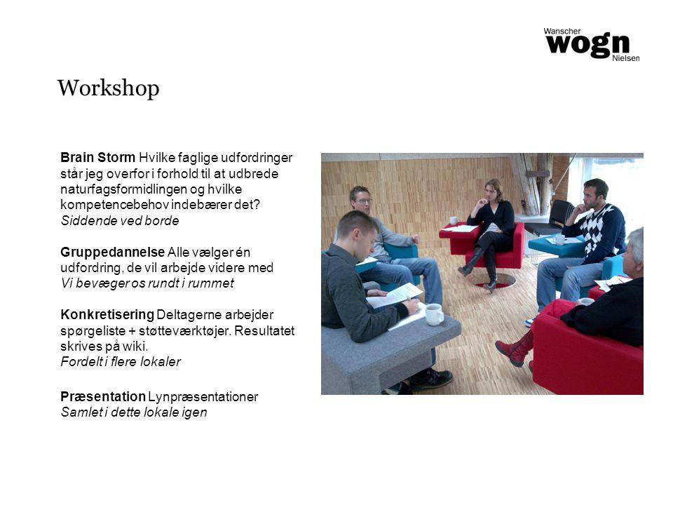 Workshop Brain Storm Hvilke faglige udfordringer står jeg overfor i forhold til at udbrede naturfagsformidlingen og hvilke kompetencebehov indebærer det.