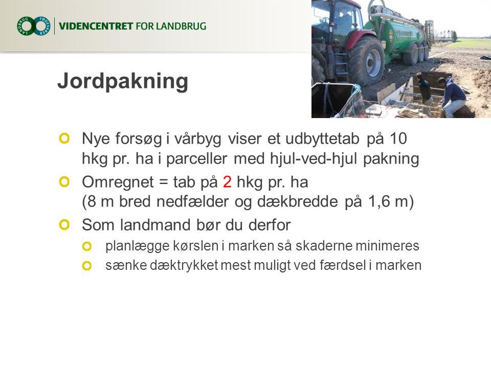 Jordpakning Nye forsøg i vårbyg viser et udbyttetab på 10 hkg pr.