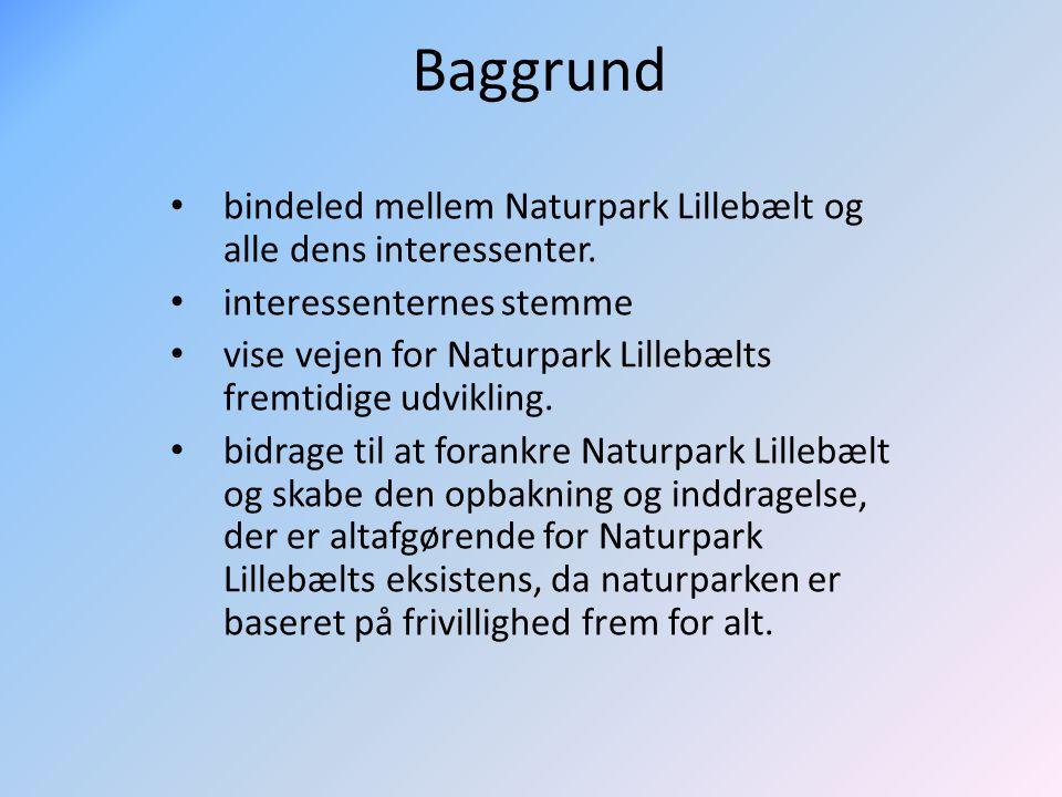 Baggrund bindeled mellem Naturpark Lillebælt og alle dens interessenter.