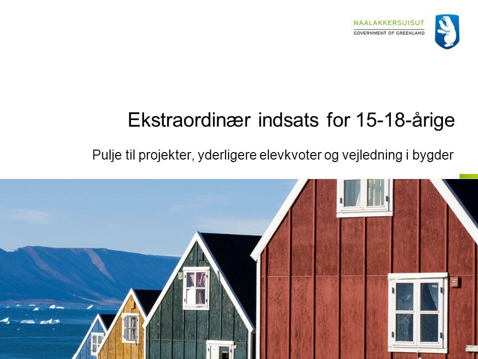 Ekstraordinær indsats for 15-18-årige Pulje til projekter, yderligere elevkvoter og vejledning i bygder