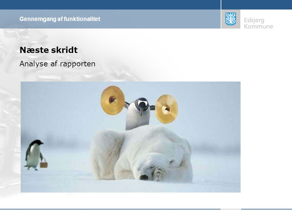Næste skridt Analyse af rapporten Gennemgang af funktionalitet