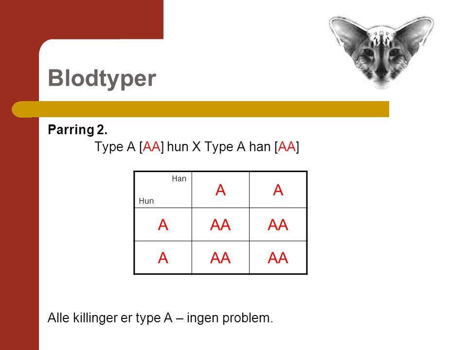 Blodtyper Parring 2. Type A [AA] hun X Type A han [AA] Alle killinger er type A – ingen problem.