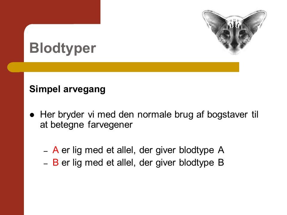 Blodtyper Simpel arvegang Her bryder vi med den normale brug af bogstaver til at betegne farvegener – A er lig med et allel, der giver blodtype A – B er lig med et allel, der giver blodtype B