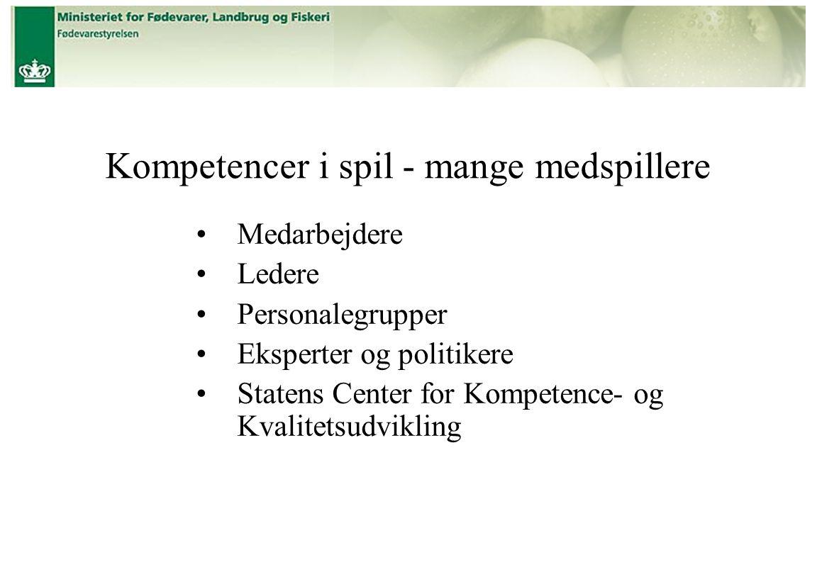 Medarbejdere Ledere Personalegrupper Eksperter og politikere Statens Center for Kompetence- og Kvalitetsudvikling Kompetencer i spil - mange medspillere